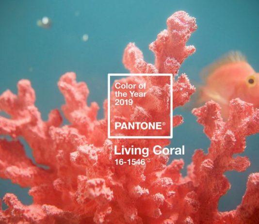 màu sắc chính thức năm 2019 living coral - cam san hô