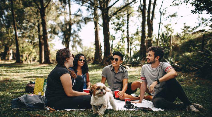 Bí quyết tiết kiệm chi phí đi picnic mà bạn không nên bỏ qua
