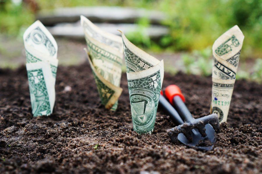 Gia tăng thu nhập